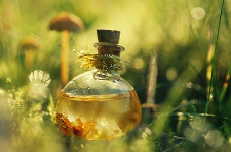 Фото: масло чайного дерева для полости рта